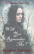 Will You Remember Me cover